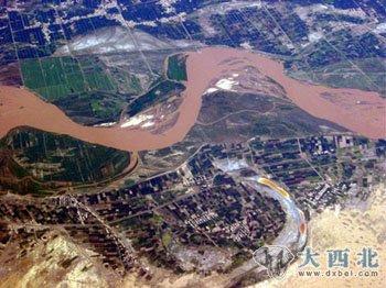 四川地区白黄色花纹的蛇