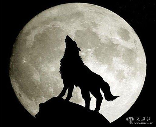 《月亮代表我的心》