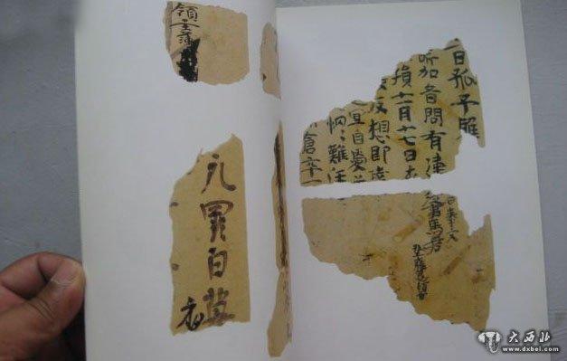 树叶标本艺术字