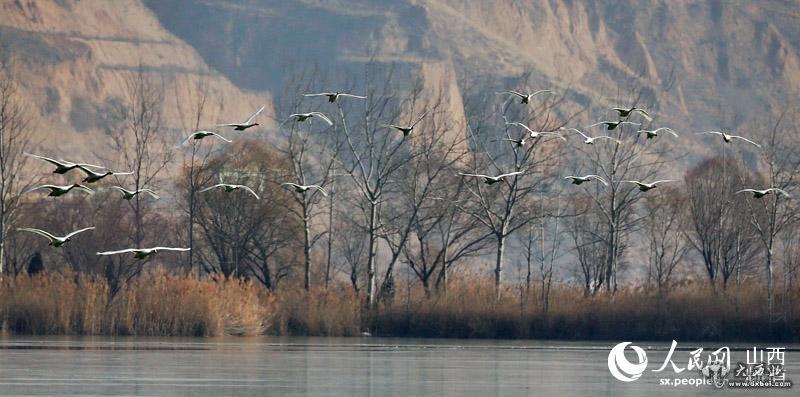 圣天湖位于山西省运城市芮城县东20公里处陌南镇南