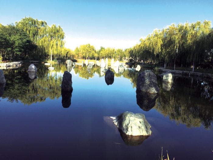 高台黑河湿地碧水映碧